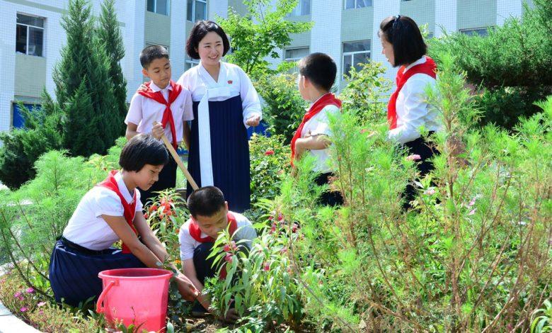 Planting a tree in a spirit of patriotism